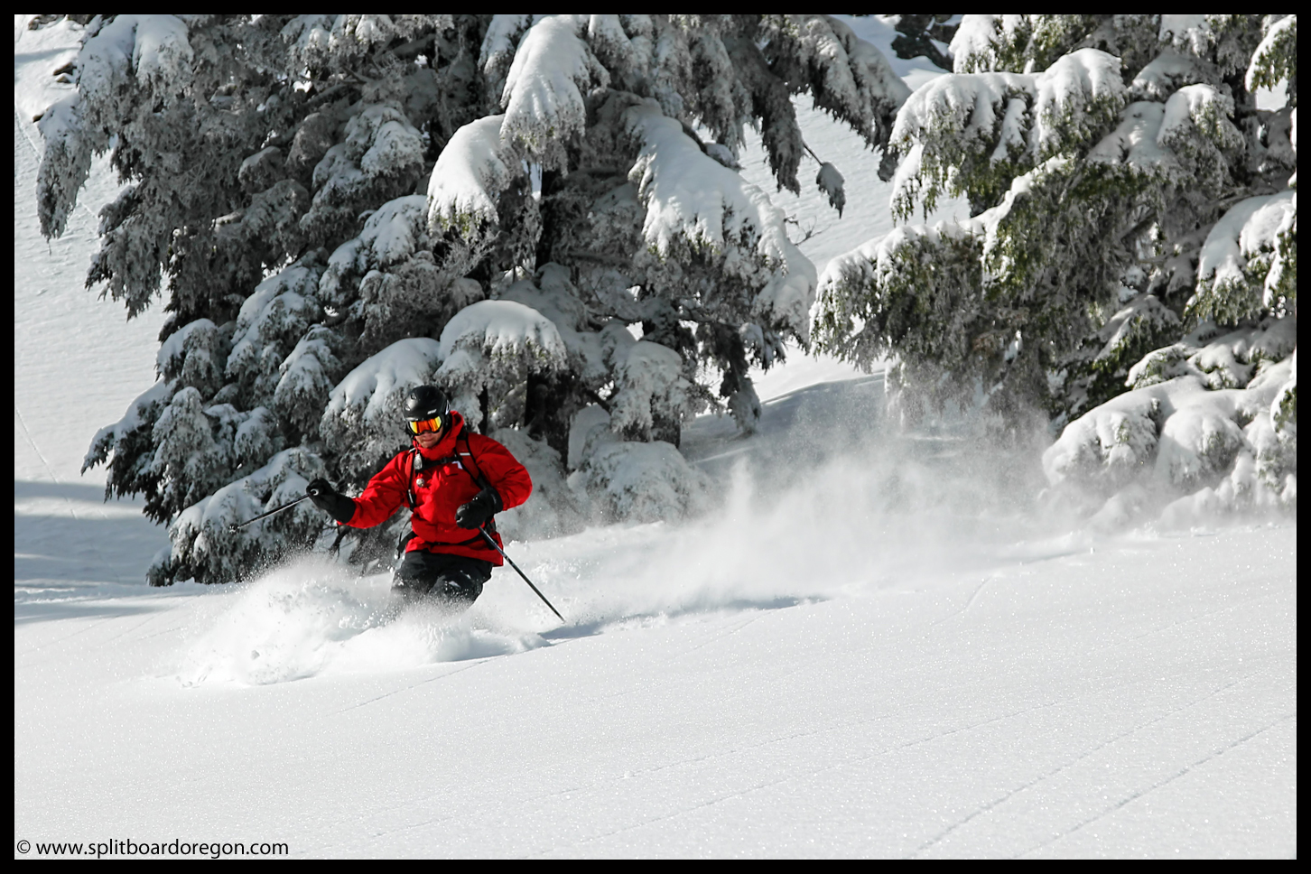 Raleigh skiing the fresh pow in the meadow